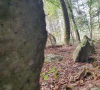 Steinreihe Risch